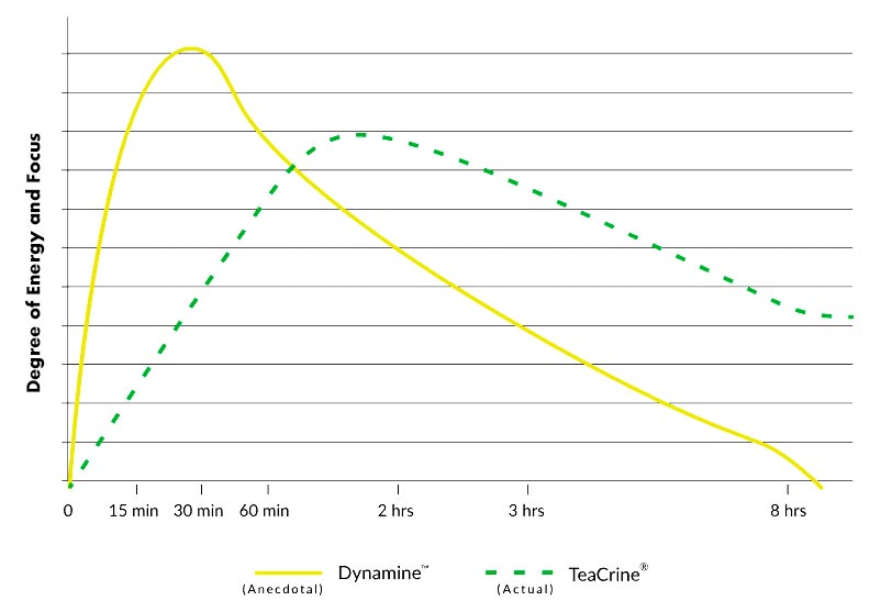 Dynamine Methylliberine Timeline of Energy and Focus
