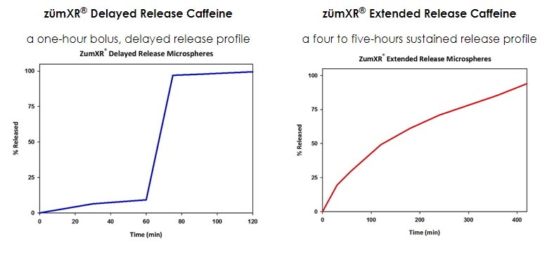 ZumXR Delayed Release Caffeine and Extended Release Caffeine Profiles